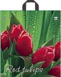 """Пакет ПВД """"Красный тюльпан"""" 43,5х40см 35мкм"""